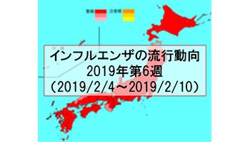 【2019年第6週】インフルエンザ沈静化へ 全都道府県で前週を下回る