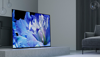 スリムなデザインの4K有機ELテレビ! 今売れている機種TOP5!